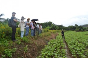 Students listening to an explanation at the soy bean farm
