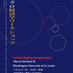 応用ミクロ経済学WS20140415